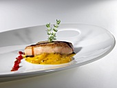 Goose liver escalope with pomegranate sauce and apricots