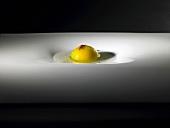 Mango raviolo, green tea, vanilla and mole spice (molecular gastronomy)