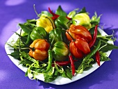 Various fresh chilli peppers on a plate