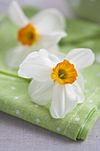 A napkin with daffodils