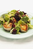 Mixed leaf salad with scallops, pecans and cranberries