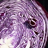 A red cabbage cross-section with the number 5