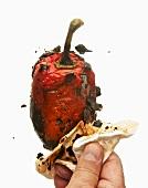 Die verbrannte Haut einer Paprikaschote abreiben