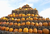 Lots of pumpkins in a hay bale pyramid