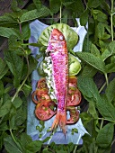 Marinierte Rotbarbe auf Tomatenscheiben