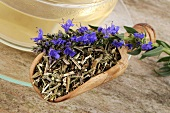 Hyssop tea with fresh and dried hyssop