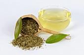 Yerba maté tea (Ilex paraguayensis)