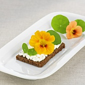 Cottage cheese and nasturtium flowers on wholemeal bread