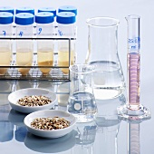 Food testing (test tubes, conical flasks, cereal grains)