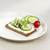 Soft cheese, cucumber, radishes and cress on wholemeal bread