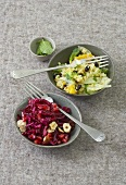 Red cabbage salad and bulgur & fennel salad