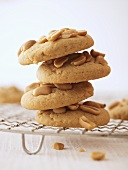 Peanut cookies, stacked