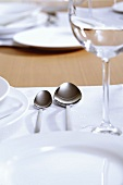 White place-setting (close-up)