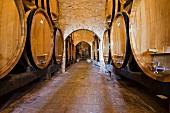 Wine cellar, Montepulciano, Tuscany, Italy