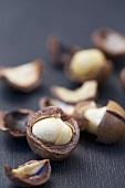 Macadamia nuts, cracked open