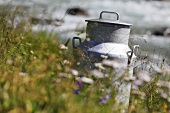 Milk churn by a mountain stream