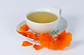 Cup of California poppy tea