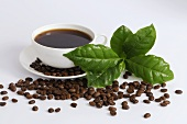 Cup of coffee, coffee leaves, coffee beans