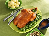 Roast goose with green beans and potato dumplings