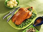 Roast goose with green beans and potato dumplings