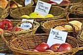 Various varieties of apples in baskets