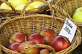'Paradies Kating' apples in a basket