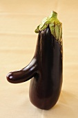 Aubergine with a nose