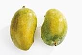 Pakistani mangos