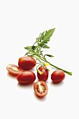 Plum tomatoes with leaf