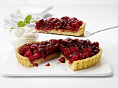 Raspberry tart, one piece on cake server