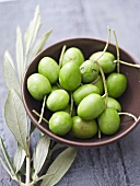Green olives in bowl, olive branch beside it