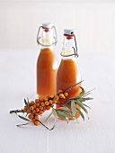 Two bottles of sea buckthorn juice and sea buckthorn berries
