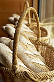 Loaves of rye bread in baskets