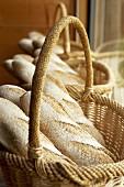 Loaves of rye bread in baskets
