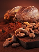Cocoa beans, cocoa powder and cacao fruits