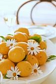 Lemons and marguerites (table decoration)