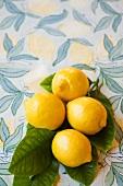 Four whole lemons on leaves