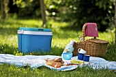 Picnic on grass