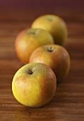 Four apples (Cox's Orange Pippin)