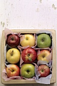 Various types of apples in a box (overhead view)