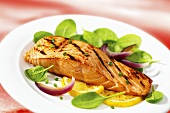 Grilled salmon fillet with baby spinach