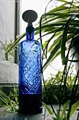 Blue crystal bottle by a window