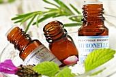 Fläschchen mit verschiedenen ätherischen Ölen