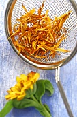 Marigold flowers, fresh and dried