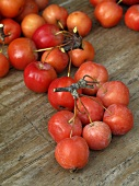 Crab apples on wooden background