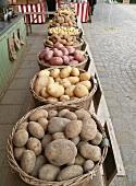 Verschiedene Kartoffelsorten in Körben auf dem Markt