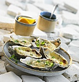 Oysters with melted cheese
