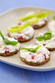 Canapes with cottage cheese, radishes and onion greens