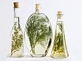 Bottles of thyme, dill and rosemary vinegar