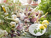 Still life with herbs, spring onions and garlic